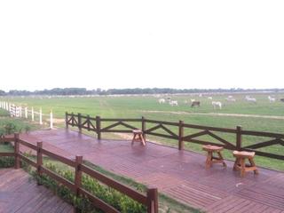 Pantanal MT